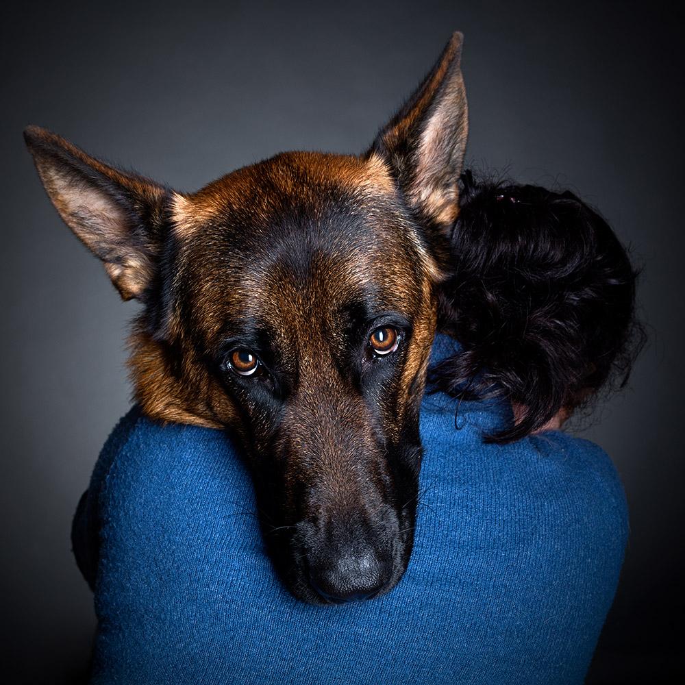 צילום כלב בסטודיו מקצועי בחיפה